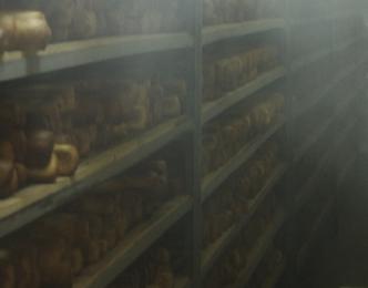 Выстойка хлеба в пекарне
